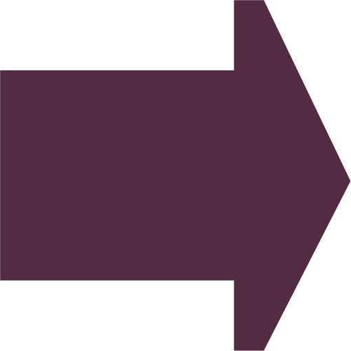 Soft play & indoor playground directional arrow plum