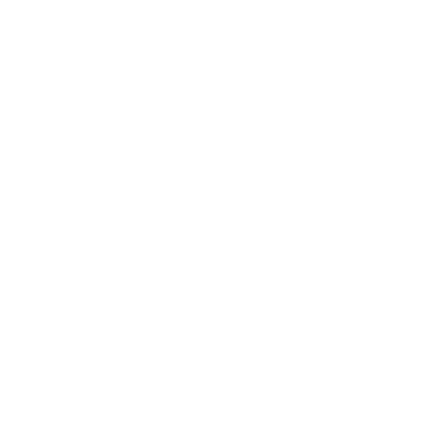 Location icon white